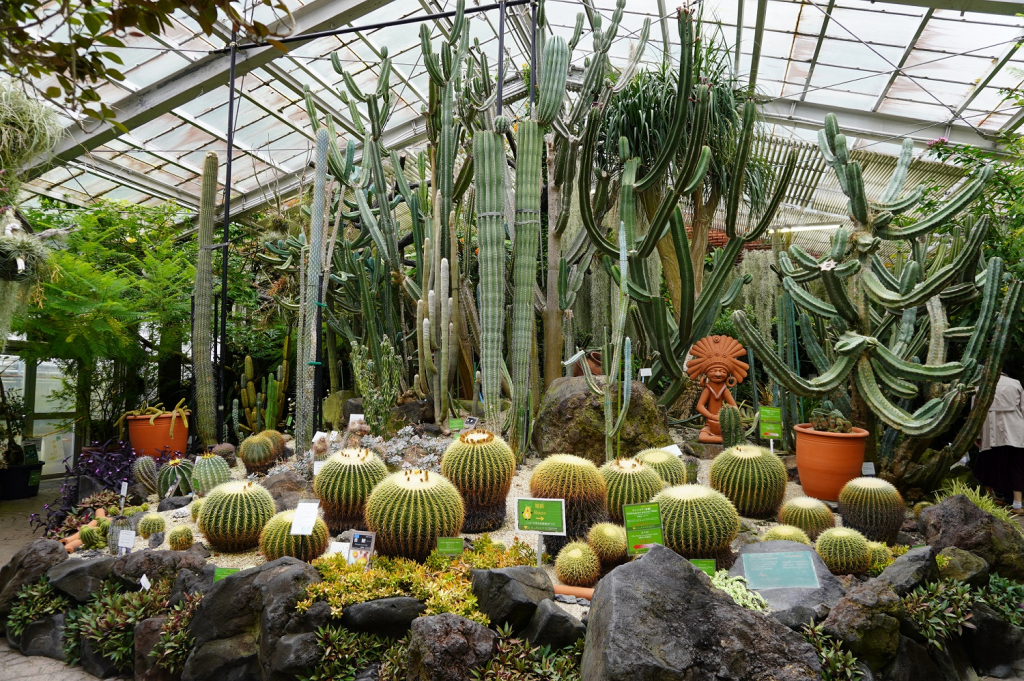 温室後館 中南米産植物温室/東山動植物園(愛知県/名古屋市)