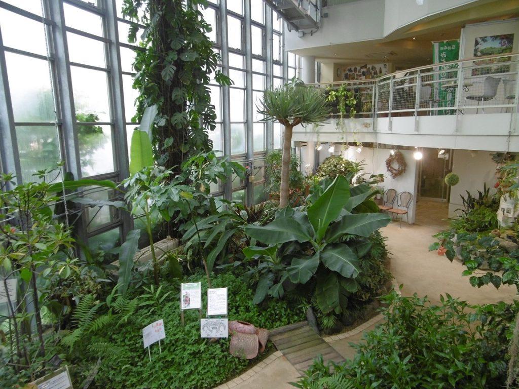 1階「グリーンガーデン」/渋谷区ふれあい植物センター(東京都/渋谷区)