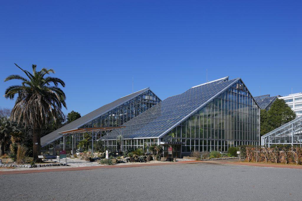 国立科学博物館筑波実験植物園の外観(つくば植物園)(茨城県/つくば市)