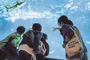 東京で子どもと遊べるおすすめおでかけスポット