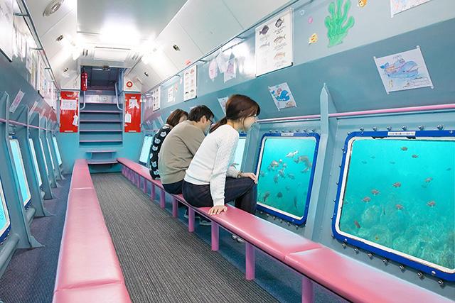 遊覧船のジーラの海中展望室/マリンパル呼子(佐賀県/唐津市)
