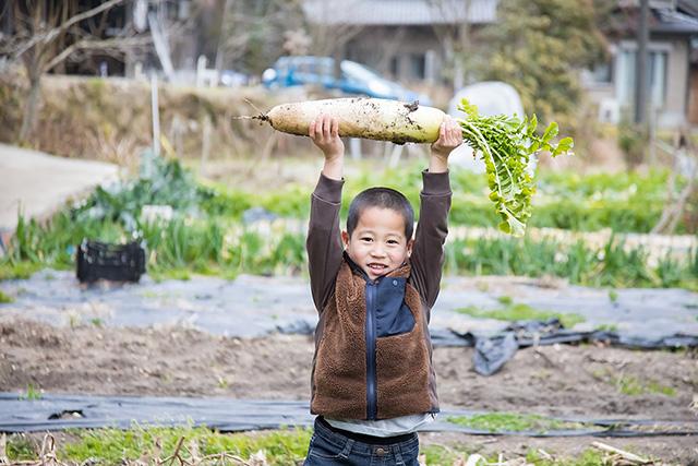 大根を収穫した子ども/農家民宿 具座(佐賀県/佐賀市)