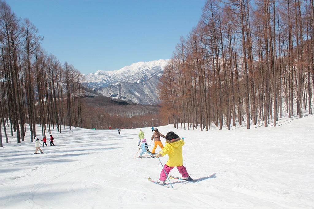 スキーを楽しむ子どもたち/水上高原スキーリゾート(群馬県/利根郡みなかみ町)