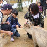 雨でもOK!東京・関東近郊の屋内動物園・動物ふれあいスポット7選