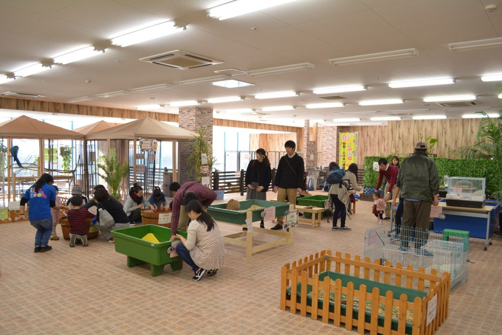 小動物ふれあいゾーン/ふれあい動物園 ライフズー(千葉県/千葉市)