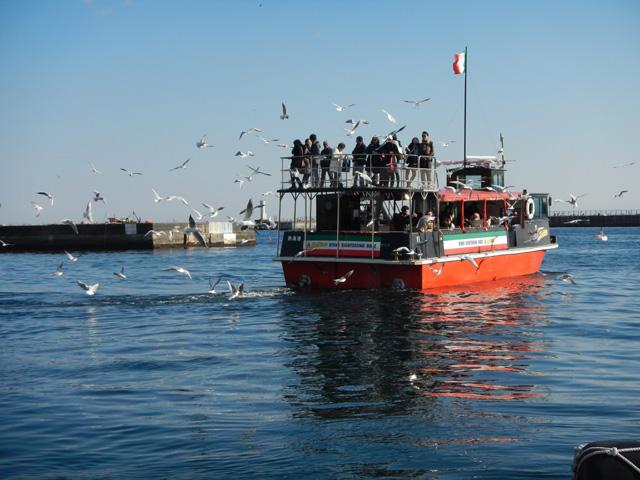 カモメに餌付けしながら景観を楽しもう/熱海遊覧船 サンレモ(静岡県熱海市)