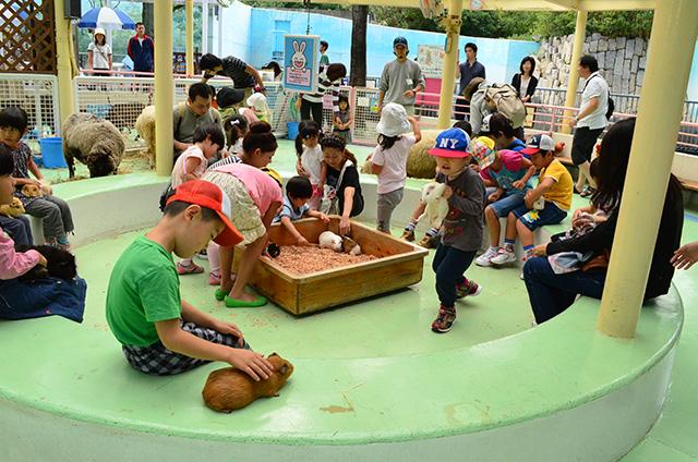 江戸川区自然動物園(東京都)のふれあいコーナー