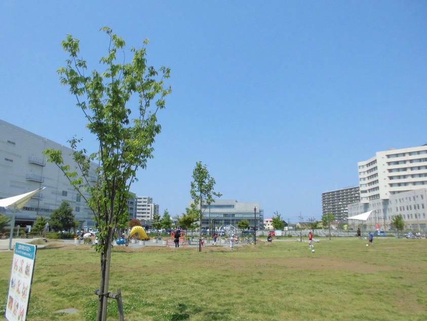 芝生広場/神台公園(神奈川県/藤沢市)