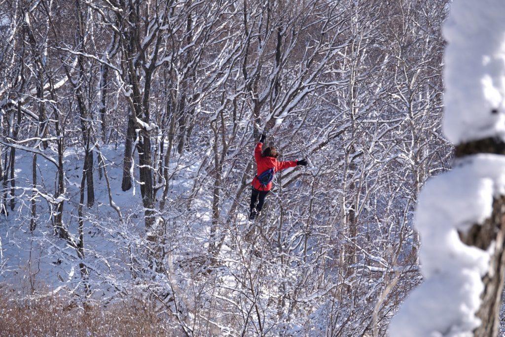 冬限定「ジップトリップツアー」/フォレストアドベンチャー・恵庭(北海道恵庭市)