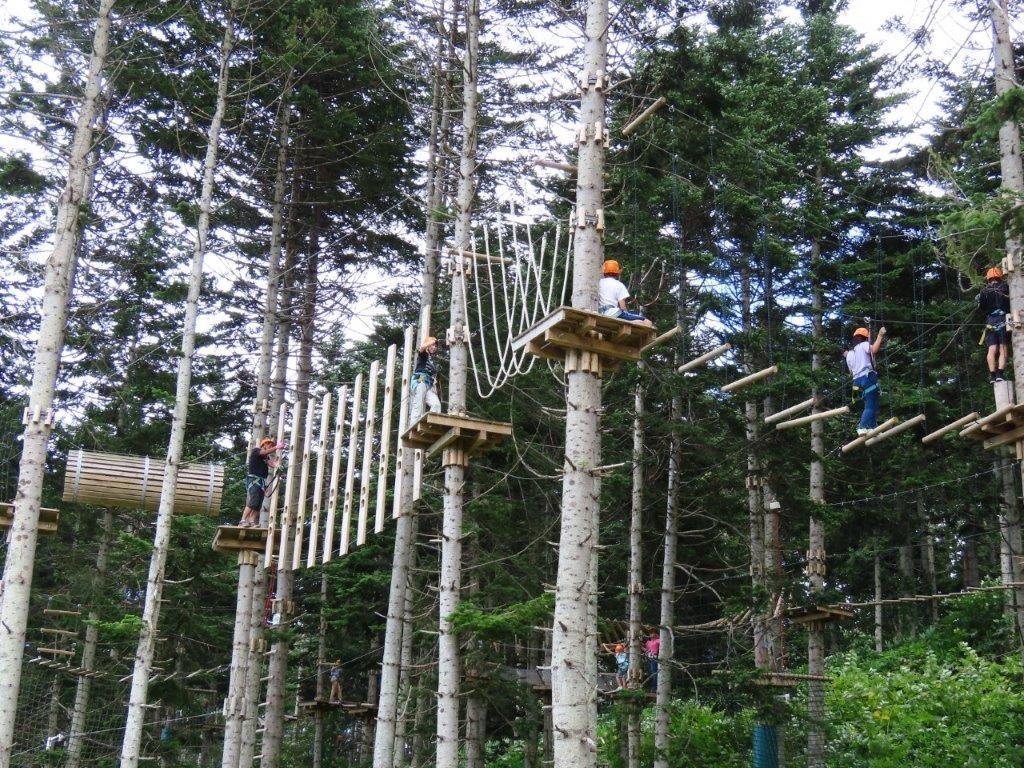 高さ5~13mの樹上に設置された様々なアスレチックコース/NACアドベンチャーパーク(北海道倶知安町)