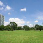 お出かけ・ピクニックに。東京都内の芝生のおすすめ公園13