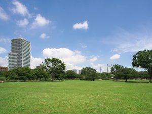 広い芝生のある大公園でリフレッシュ!東京都内編。駐車場情報付き【休校中のコロナ対策】
