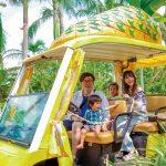 パイナップル号に乗ってゴー!パイナップルのテーマパーク「ナゴパイナップルパーク」を楽しもう!
