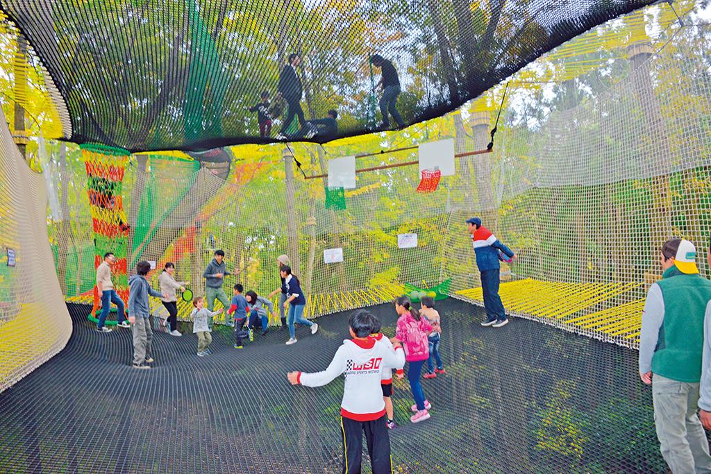 ネットの上で飛び跳ねる子どもたち/森の空中あそび パカブ(神奈川県/南足柄市)