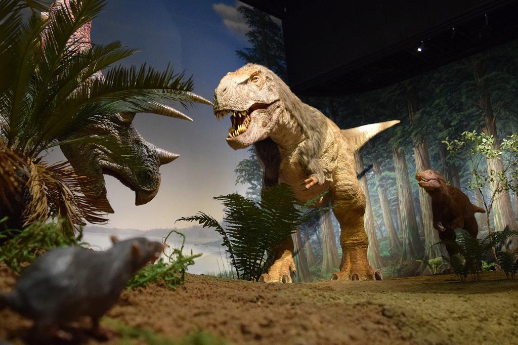 ミュージアムパーク茨城県自然博物館の羽毛をまとったティラノサウルス