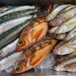 おうち時間に親子で料理体験!「お魚体験直送便」でいわしのつみれづくりに挑戦!