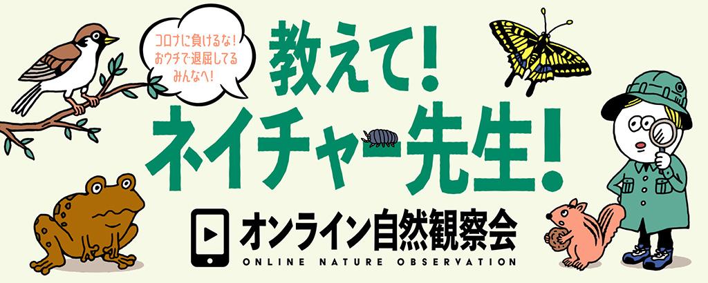 「教えて!ネイチャー先生」オンライン自然観察会