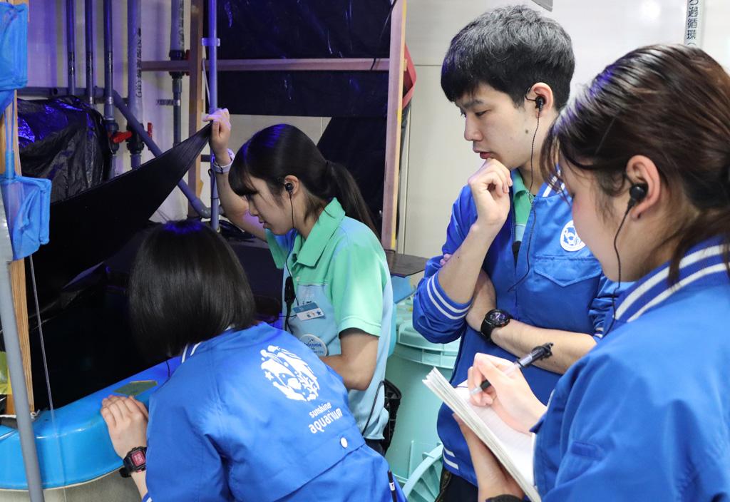 飼育チームによる飼育の様子/サンシャイン水族館(東京都/豊島区)