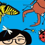 近場で昆虫観察!虫の探し方は?人気の花は?都内おすすめ公園の昆虫レポート付き