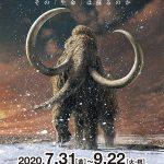 「マンモス展」は大阪で2020年7月31日から!史上最大級の規模で開催