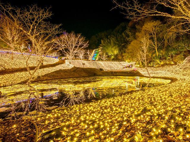 NESTA ILLUMINA(ネスタイルミナ)~光のさんぽみち~(兵庫県/三木市)