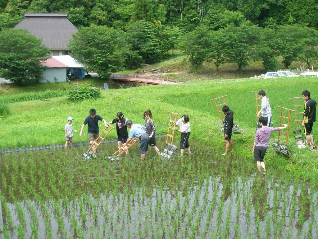 親子で楽しむ関西周辺の農業体験スポット。日帰りや宿泊者限定の農家民宿も