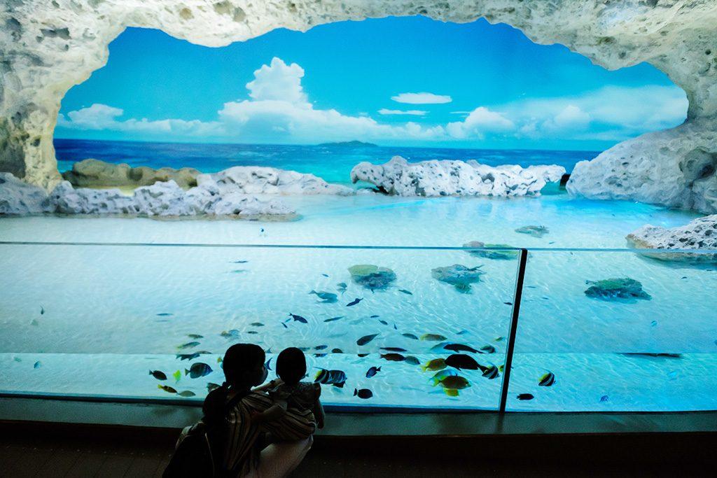 沖縄の海岸を再現した空間/DMMかりゆし水族館(沖縄県/豊見城市)
