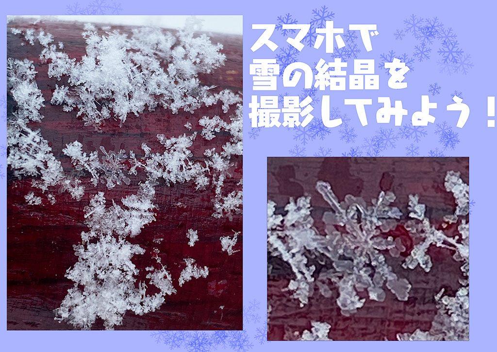 スマホで雪の結晶を撮影してみよう
