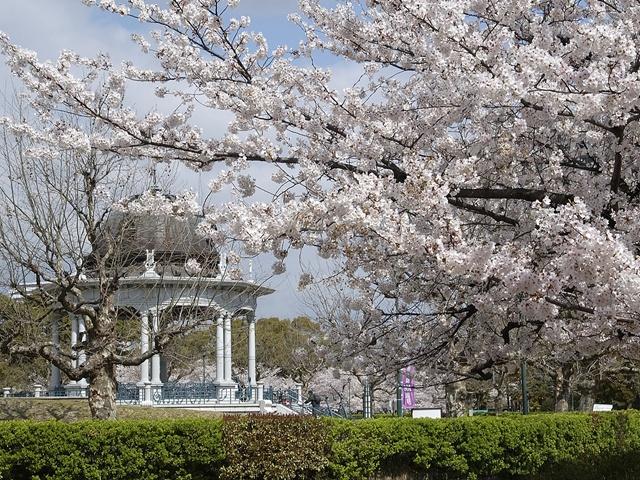 鶴舞公園(愛知県/名古屋市昭和区)
