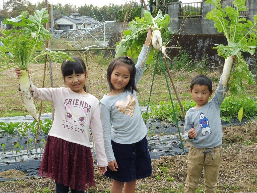 宮崎で体験する癒しの農泊スポット!親子で豊かな時間を過ごそう