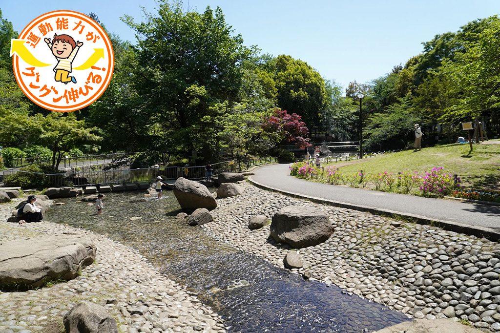 蚕糸の森公園(東京都/杉並区)