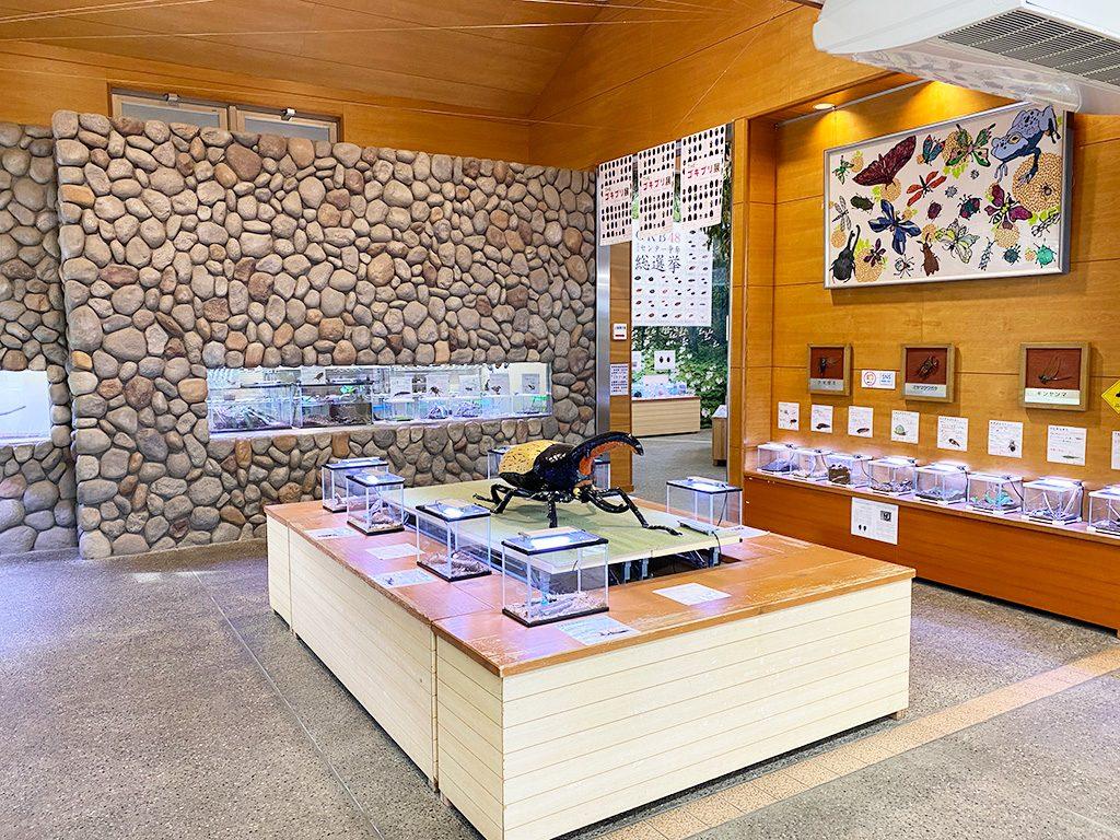 磐田市竜洋昆虫自然観察公園(静岡県)