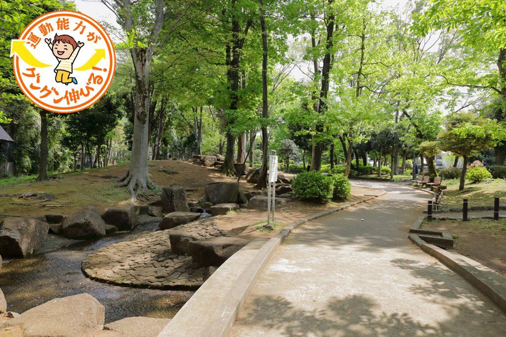 木々に包まれた駒沢緑泉公園(世田谷区)で水遊び&お散歩♪