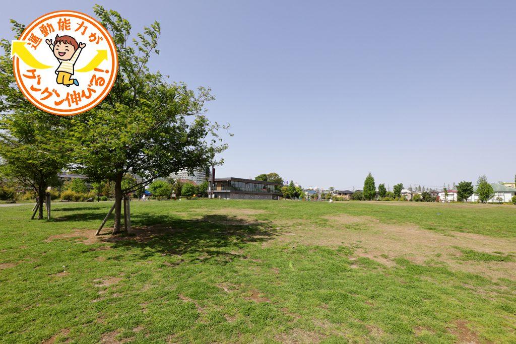 下高井戸おおぞら公園(杉並区)は巨大ネット遊具と芝生広場で遊び尽くす!