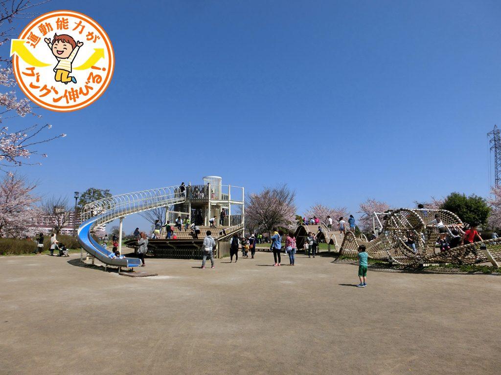 大型アスレチック遊具でダイナミックな遊びが楽しめる大島小松川公園(江東区)