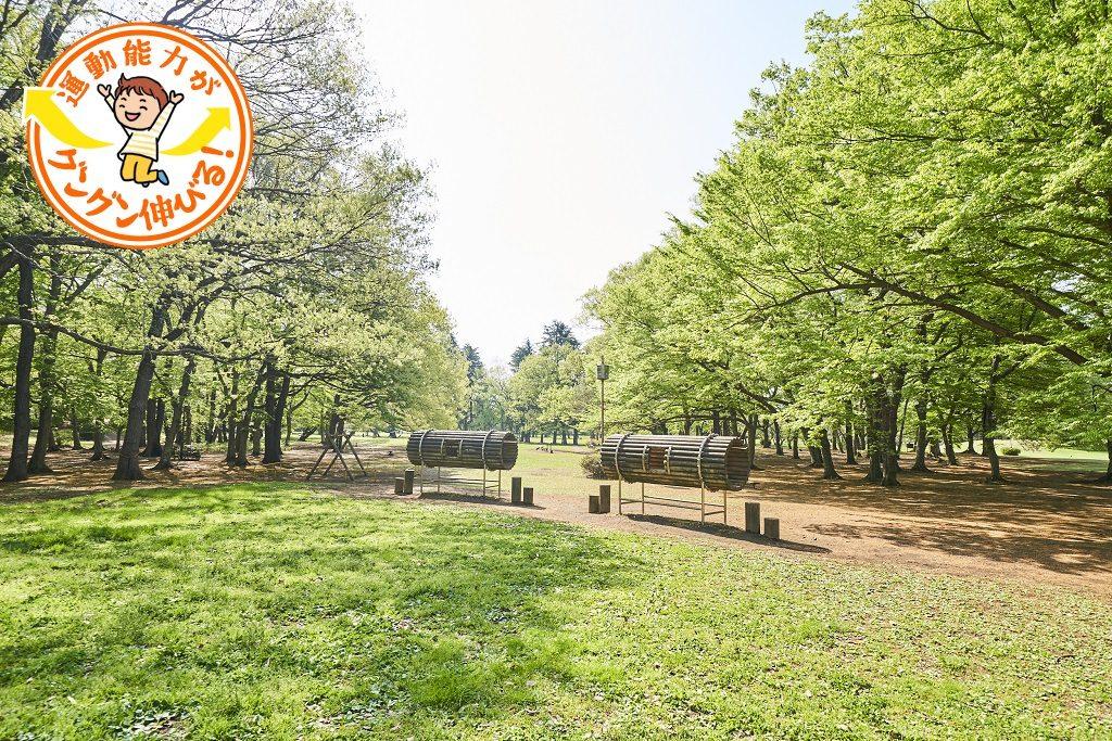楽しみ方は無限大!広大な野川公園(三鷹市)を遊び尽くそう