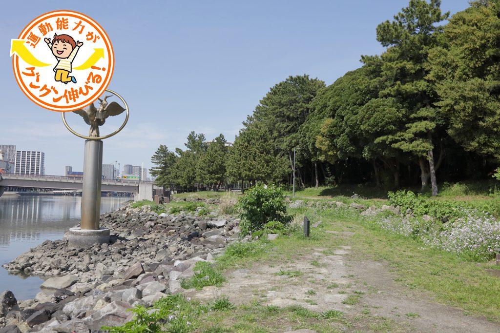 大井ふ頭中央海浜公園なぎさの森(品川区)は森と水辺の遊びが楽しい!