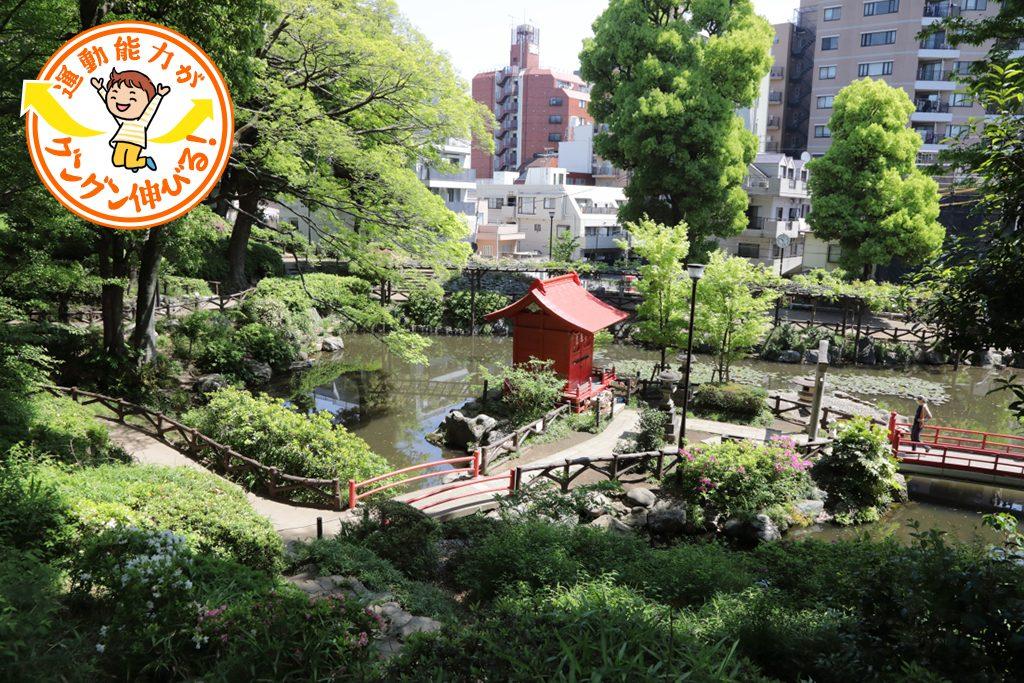 高低差のある地形が魅力!須藤公園(文京区)で自然とふれあう
