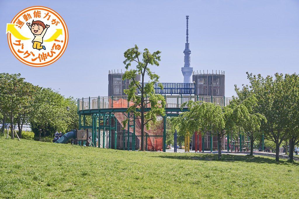 大型複合遊具が楽しい汐入公園(荒川区)でスカイツリーを望みながら思いっきり遊ぼう