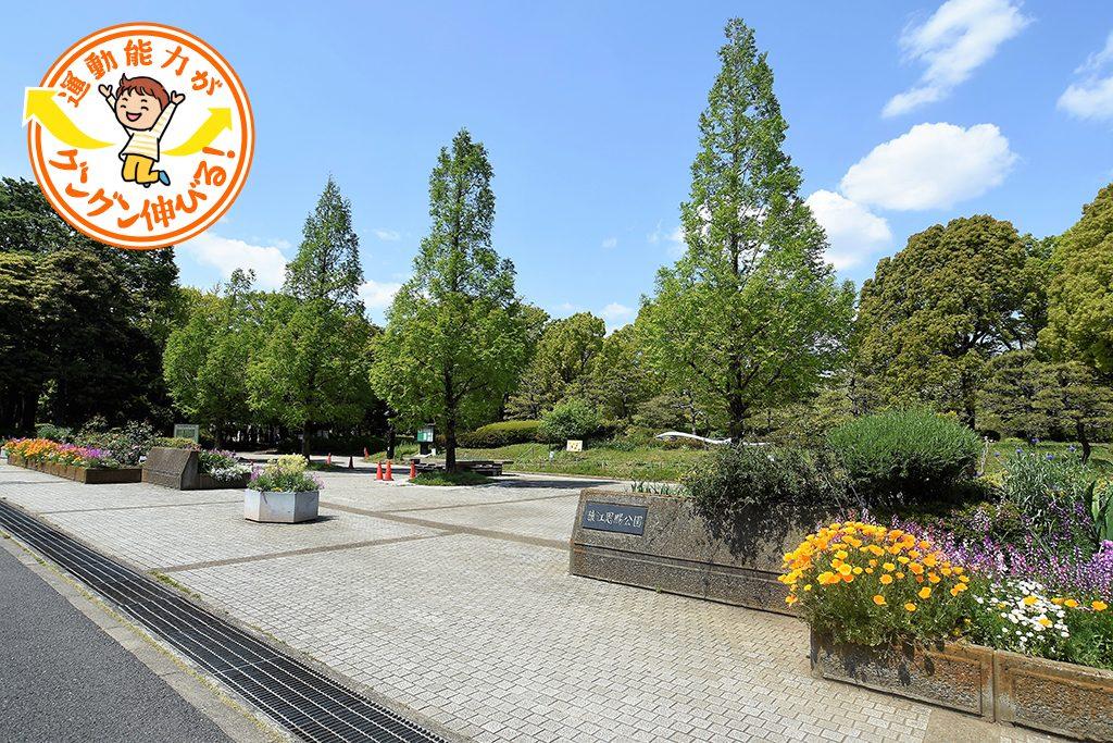 猿江恩賜公園(江東区)は複合遊具が充実した冒険広場が大人気!