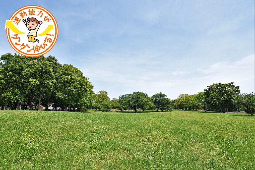 篠崎公園(江戸川区)の広大な敷地には、3つの遊具広場が点在!