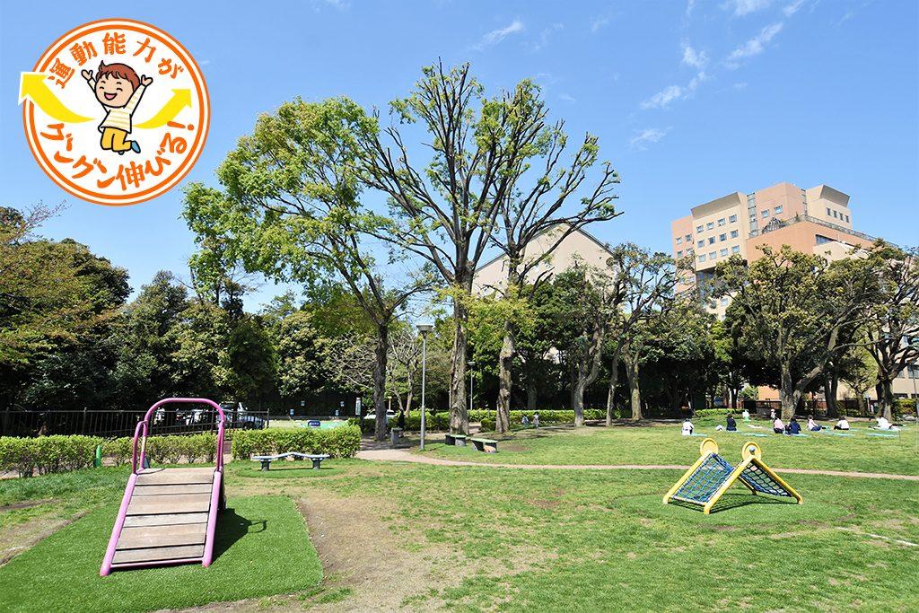 目白台運動公園(文京区)は噴水が爽やかな芝生広場でのんびり過ごして!
