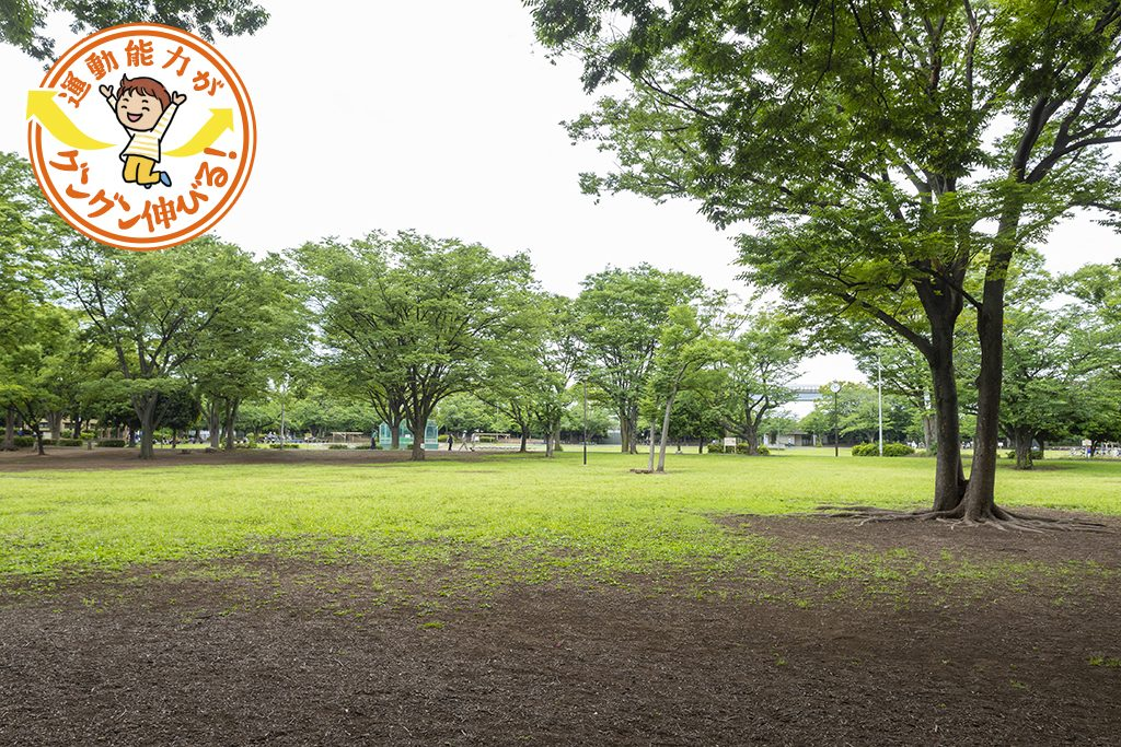 広〜い芝生の上で思いっきり遊ぼう!新小岩公園(葛飾区)