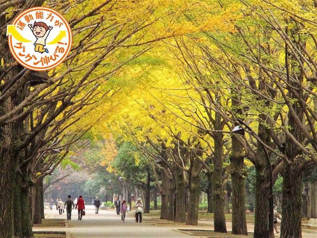光が丘公園(練馬区・板橋区)は6万㎡の芝生広場や多彩な遊具、バーベキュー広場などが揃う、1日遊べる公園