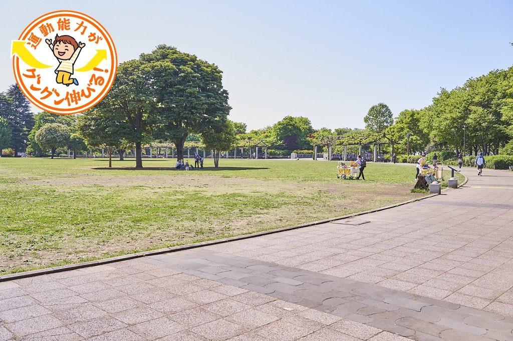 武蔵国分寺公園(国分寺市)は2つの芝生の広場をもつ水と緑のオアシス