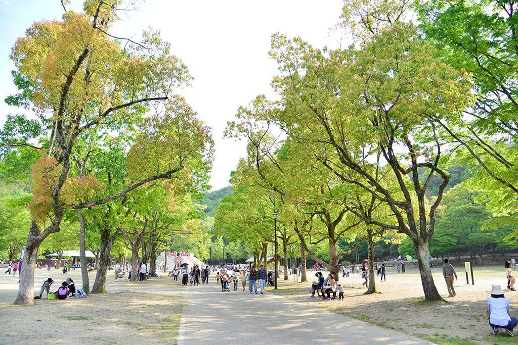 宝が池公園(京都府/京都市)