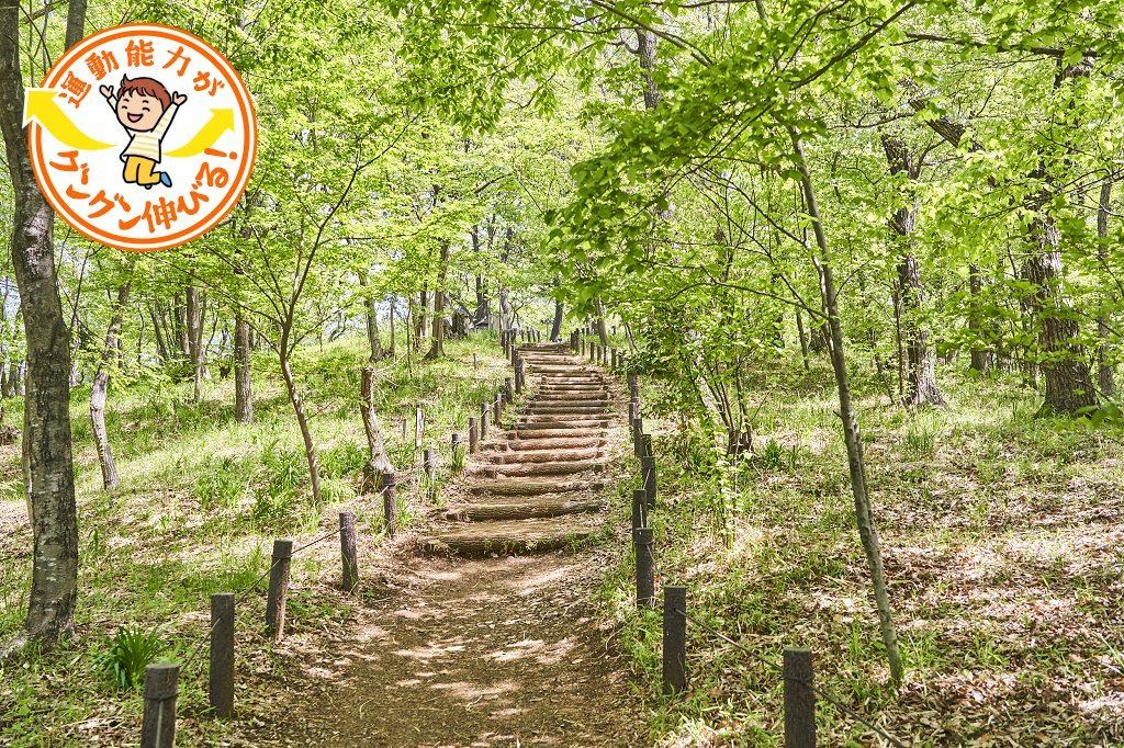 気軽にハイキングが楽しめる浅間山公園(府中市)で自然を体感しよう!