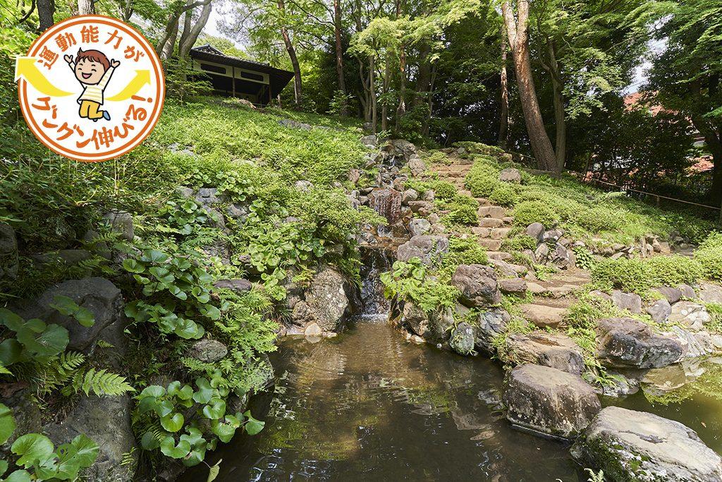 起伏ある殿ヶ谷戸庭園(国分寺市)は自然たっぷりで、小さな子どもとの散策に最適