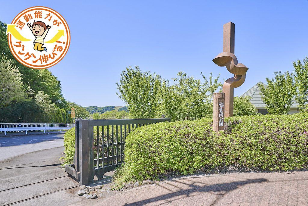 多摩川緑地福生南公園(福生市)の5つのアスレチック遊具が楽しい!