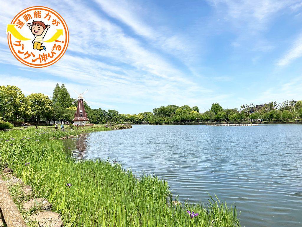 浮間公園(板橋区)は池の周りに水生植物園やバードサンクチュアリが点在する緑豊かな公園